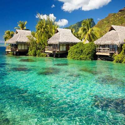 Tour du lịch sông nước miền Tây – biển đảo Phú Quốc
